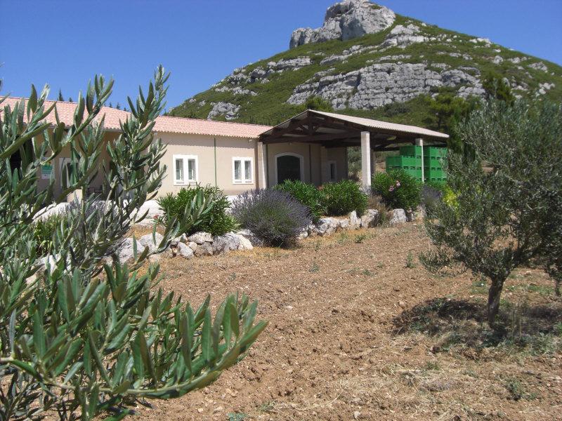 Domaine plaines marguerite office de tourisme maussane - Office de tourisme maussane les alpilles ...